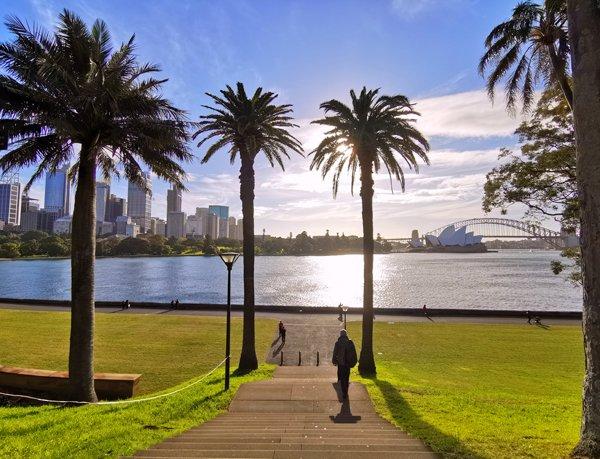 sydney, giardini botanici, australia, sydney opera house, harbour bridge, panorami sydney, sydney skyline